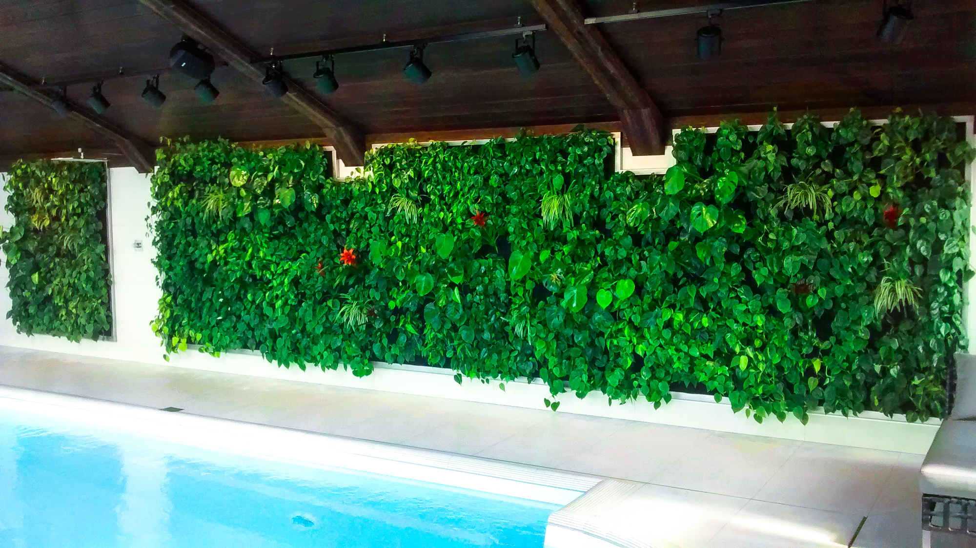 Interior Design Green Living Wall In Swimming Pool Project